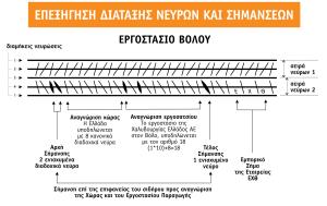 ΠΙΝΑΚΑΣ_ΔΙΑΤΑΞΗΣ_ΝΕΥΡΩΝ_short